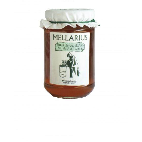 Miel de Eucalipto 500 g