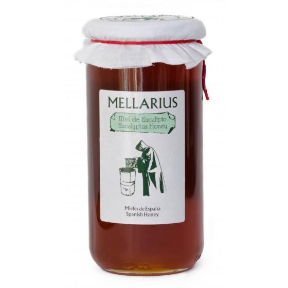 Miel de Eucalipto 970 g